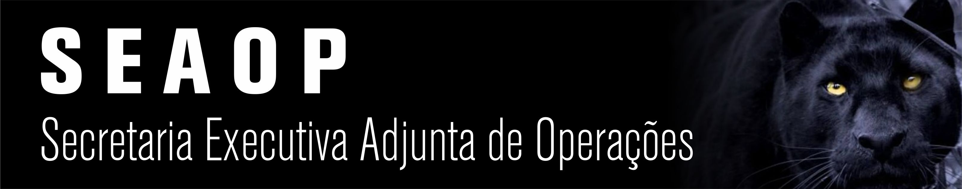 Secretaria Executiva Adjunta de Opera��es